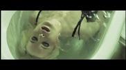 * Превод * Sander van Doorn ft. Carol Lee - Love Is Darkness ( Oфициално видео )