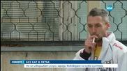 """ДЕН БЕЗ КАТ: Службите на """"Пътна полиция"""" затварят заради нова система - обедна емисия"""