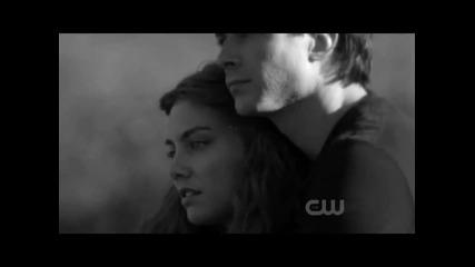 The Vampire Diaries ~~ Damon & Rose ~~