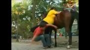 Качете тази дебелана на коня - Скрита Камера (луд смях)