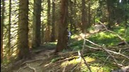 Freeride and Downhill - Julien Camellini 2009