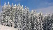 Най - новите вериги за сняг от Pewag Snox