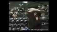 The Life Of Bodybuilding