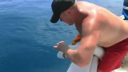 Човек срещу Акула