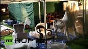 Великобритания: Унищожителни пламъци бушуват в историческата къща Clandon Park
