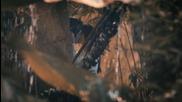 Ozcan Deniz-gecer