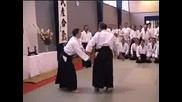 Ushiro Ryote Dori: 5 Techniques