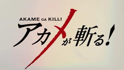Akame Ga Kill! episode 23 (бг събс)