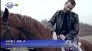 Крум ft Анелия - Забрави 2015