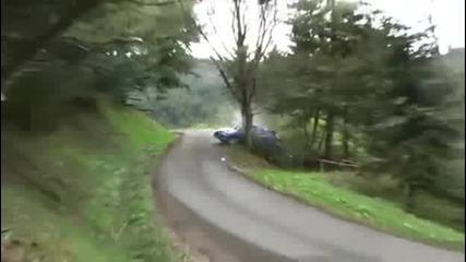 На това дърво там ли му е мястото!///