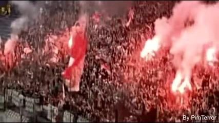 Feyenoord Hooligans
