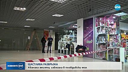 Хванаха змията, избягала от зоомагазин в мол в Пловдив