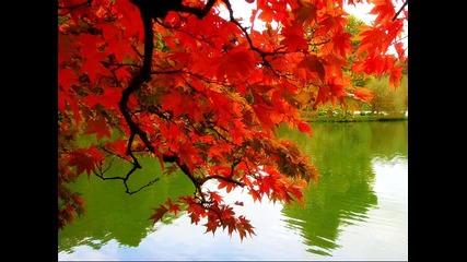 Есента - най - красивия сезон