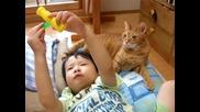 Коте и бебе пораснало 2