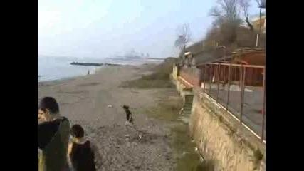 Freerun - Angel Gainer - Бургас