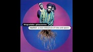 Digable Planets - Time and Space (a New Refutation Of)