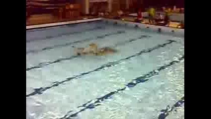 Синхронно Плуване - Отбор Нса - Прага 2007