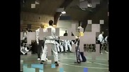 taekwondo vs capoeira