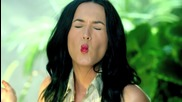 Katy Perry - Roar ( Officia Video 2013 )