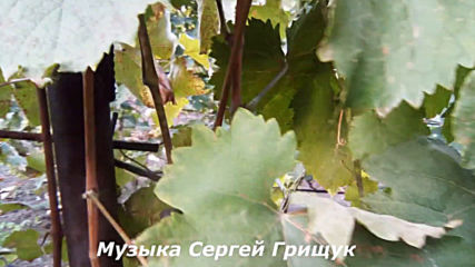 Музыка Сергей Грищук - Уходящая Осень