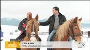 Езда в снега – сред туристите в Банско и Разлог