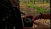 Без Багаж - Люпилня за костенурки - Индонезия