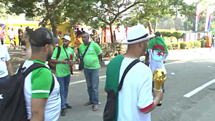 Egypt: Fans gear up for Senegal vs. Algeria AFCON finals