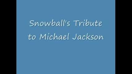 Coco _jacko_ Tribute to Michael Jackson