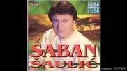 Saban Saulic - Sejo moja - (Audio 2001)