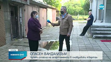 Пловдивчани живеят в страх заради системен тормоз и посегателства