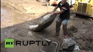 Италия: Наводнения причиниха много щети из Росано