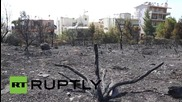 Greece: Mount Hymettus burns in sweeping forest fires