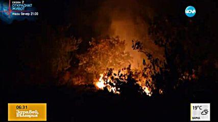 Пожар лумна на метри от къщи в ловешко село