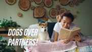 Need more sleep? Talk to your dog!