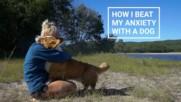 Когато имаш куче - нямаш депресия