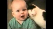 Майтапи С Котки