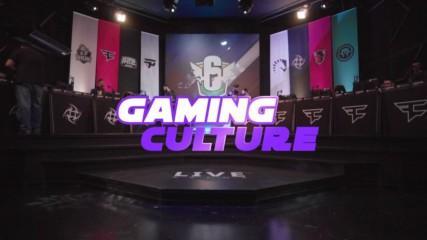 Gaming Culture: The eSport Arena