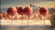 Какво щеше да стане ако животните бяха кръгли - Фламинго