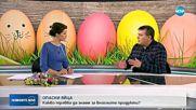 Вредни ли са боите за яйца?