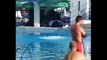Скок Във Вода!