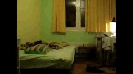 Скок В Леглото