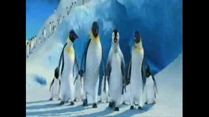 Happy Feet - Весели Крачета