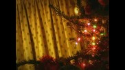 Minuscule - Christmas with the spider and the fly