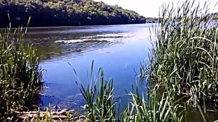 Nature River Южный Буг Vinnytsia Ukraine