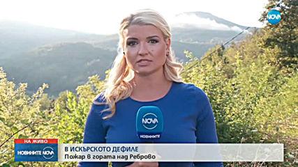 Голям пожар гори край Реброво (ВИДЕО+СНИМКИ)