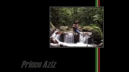 Prince Aziz - Redemption (xpulsion Riddim)