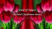 Поле от лалета! ... ( Richard Clayderman music) ...