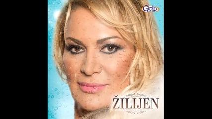 Zilijen - Necujna zmija ( Audio 2014 )