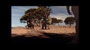 Динозаври (част 14)