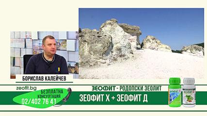 Зеофит - родопски зеолит - въпроси и отговори